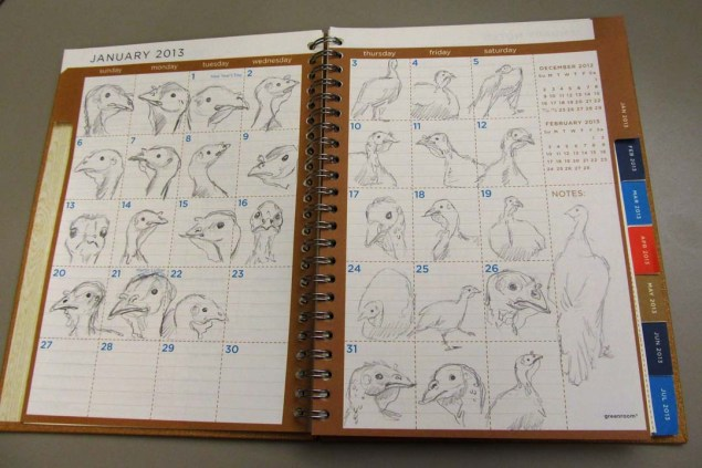 This day planner contains over 1,000 sketches of turkeys!