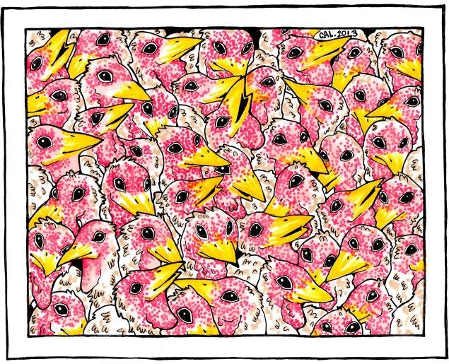 48 turkeys drawn with marker by Caroline Locatelli (New York).