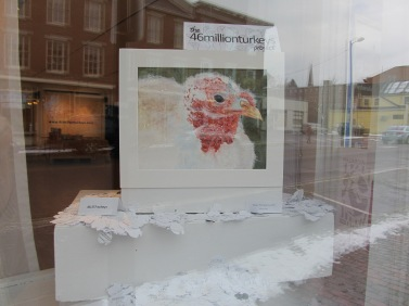 The 46millionturkeys project was on exhibit at the Harlow Gallery in November 2013