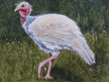 """Happy Thanksgiving 2013 © Cheryl L Miller 22-1/4"""" X 30"""" Watercolor With Rice Paper"""