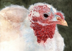 """Happy Thanksgiving 2010 © Cheryl L Miller 12"""" X 16"""" Watercolor With Rice Paper"""