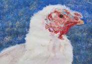 "Happy Thanksgiving 2004 © Cheryl L Miller 16-1/4"" X 21--3/4"" Watercolor"